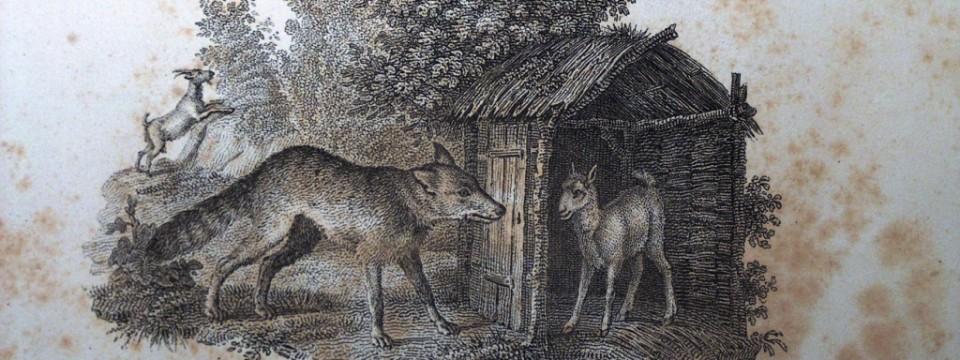 loup-chevre-chevrau